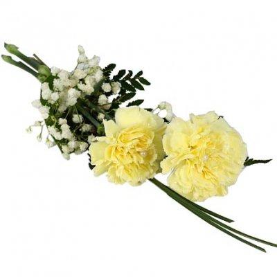 Handblomma begravning