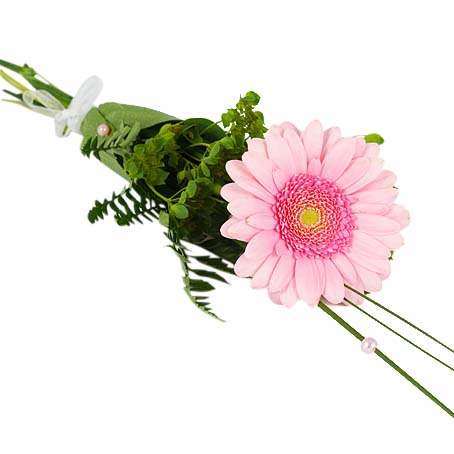 färg på rosor vid begravning